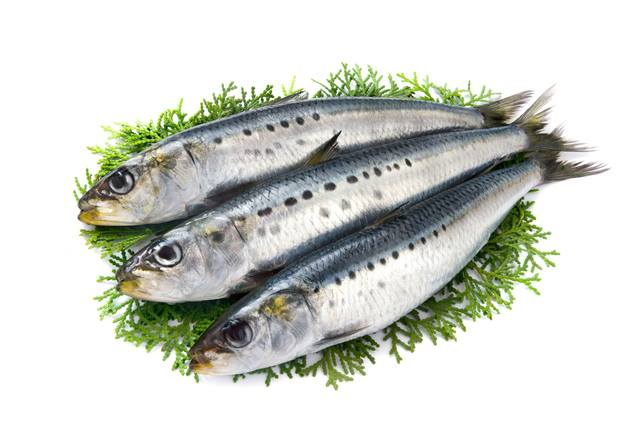 Cá thực phẩm người bệnh sau mổ lên ăn