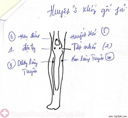 Hướng dẫn bấm huyệt chữa đau khớp gối hiệu quả