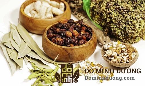 Bài thuốc điều trị thoát vị đĩa đệm hiệu quả của nhà thuốc Đỗ Minh Đường